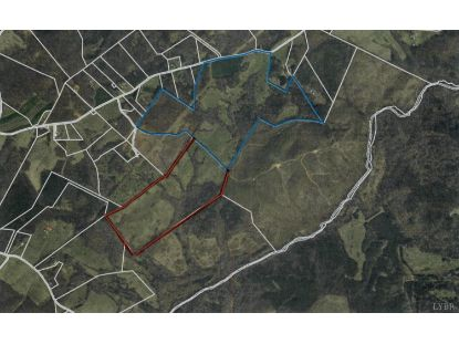 0 Mt. Pleasant Road Appomattox, VA MLS# 329188