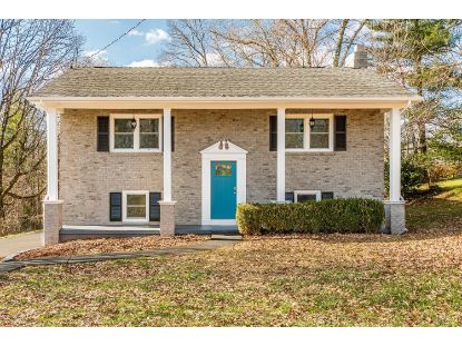 305 Mountainview  Madison Heights, VA MLS# 329255