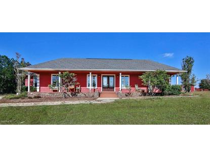 16877 SE 49th Street Road, Ocklawaha, FL