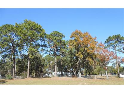 9487 E Hwy 25  Belleview, FL MLS# 512159