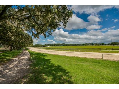 19350 SE 52ND Place, Morriston, FL