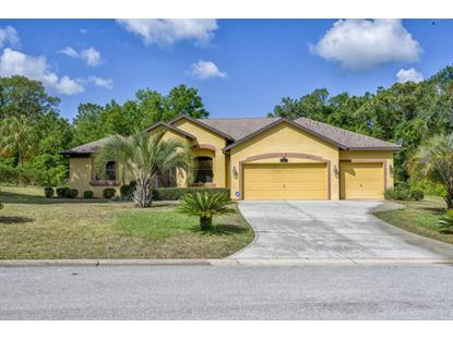 8329 SW 196th Court Road, Dunnellon, FL