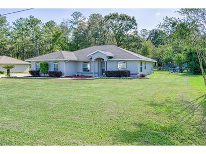 4355 SE 64th Avenue Road Ocala, FL MLS# 524267
