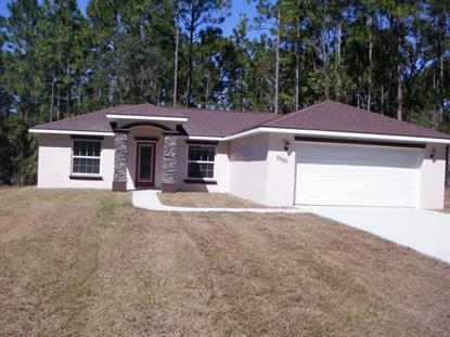 9563 N Travis Drive, Citrus Springs, FL