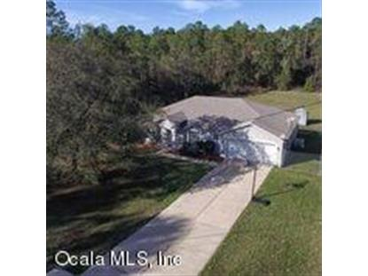 16283 SW 55th Street Ocala, FL MLS# 547651