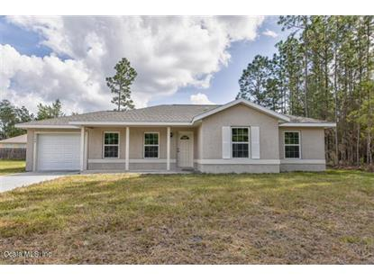 157 Spruce Road Ocala, FL MLS# 549451