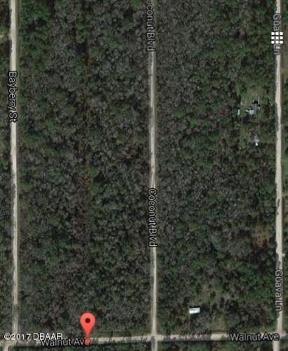6665 Walnut Avenue, Bunnell, FL 32110