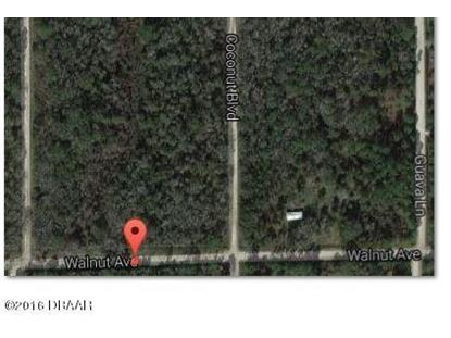 6615 Walnut Avenue, Bunnell, FL