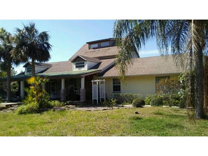 289 Hickory Avenue, Oak Hill, FL