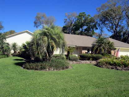 1705 Sky Hawk Court, Port Orange, FL