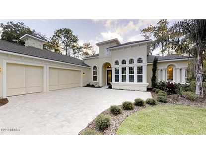2406 Wild Turkey Creek Lane, Port Orange, FL