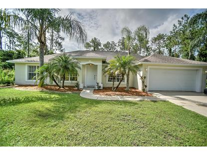 16 Kashmir Trail Palm Coast, FL MLS# 1044919