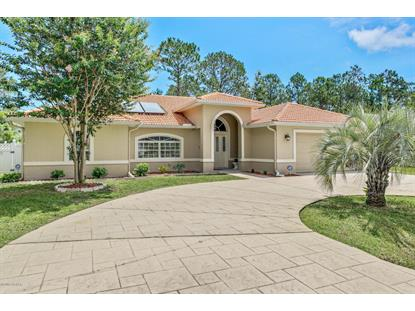 11 Pinto Lane, Palm Coast, FL