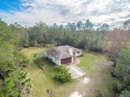 466 Juniper Lane Ormond Beach, FL MLS# 1052689