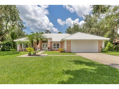 6190 Half Moon Drive Port Orange, FL MLS# 1073108