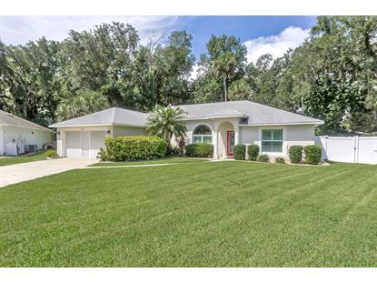 1163 Silver Creek Run Port Orange, FL MLS# 1073133