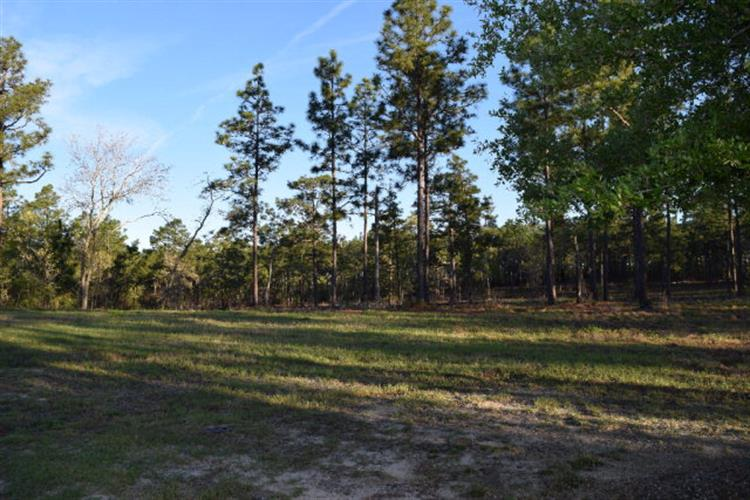 Lot 4 Woods End Way, Aiken, SC 29803