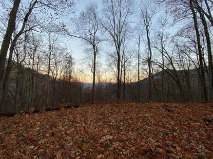 00 Woods Road  Waynesville, NC MLS# 450010
