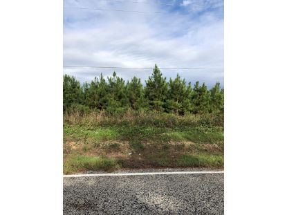 0 Cates Mead Road  Waynesboro, GA MLS# 462064