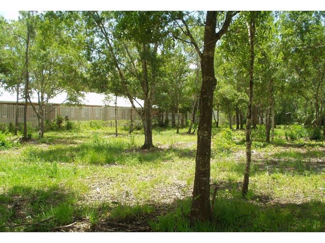 12956 100th Place, Fellsmere, FL 32948