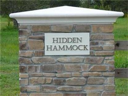 7705 Hidden Hammock Lane Vero Beach, FL MLS# 214764
