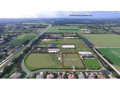 12542 Equine Lane Wellington, FL MLS# RX-10159512