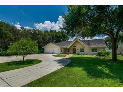 summerfield fl real estate for sale