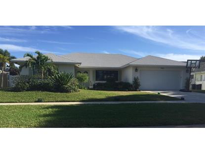 17424 Spring Tree Lane, Boca Raton, FL