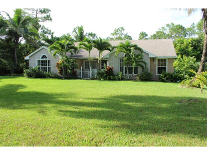 17569 81 N Lane Loxahatchee, FL MLS# RX-10497230