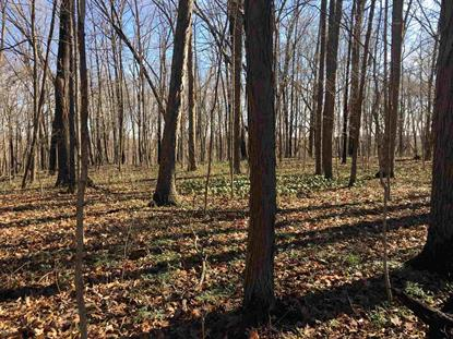 Lot 20 Bicycle Bluff Lane Lot# 20 Delphi, IN MLS# 201914099
