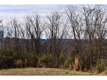 0 SR 66 Highway Cannelton, IN MLS# 202102703
