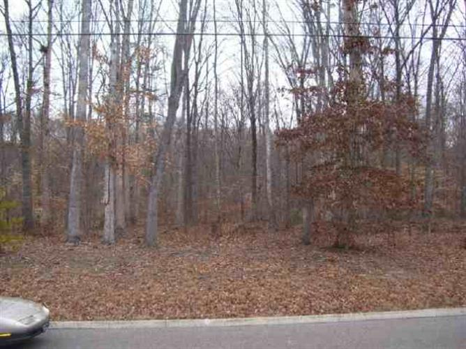 LOT 14 Devon Way Road, White Pine, TN 37890