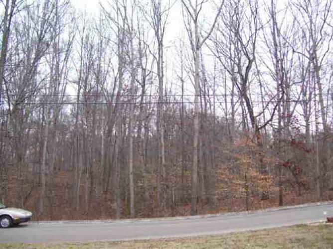 LOT 16 Devon Way Road, White Pine, TN 37890