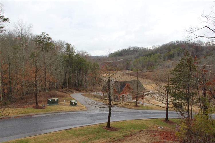 Lot 106 Stone Bridge Dr, Dandridge, TN 37725