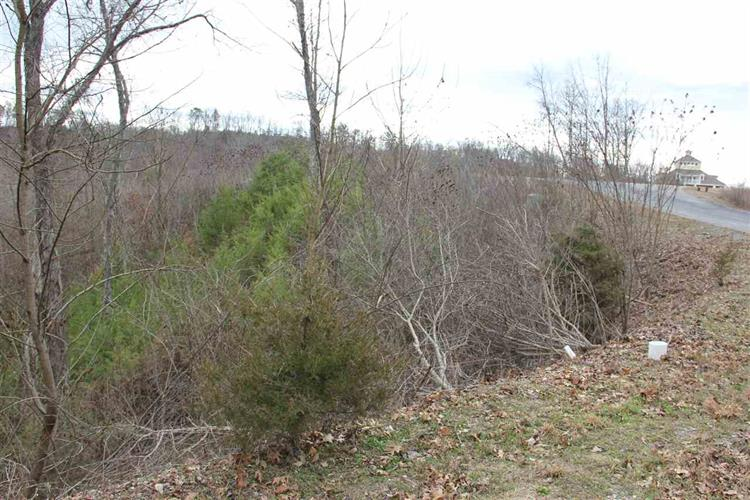 Lot 25 Stone Bridge Dr, Dandridge, TN 37725