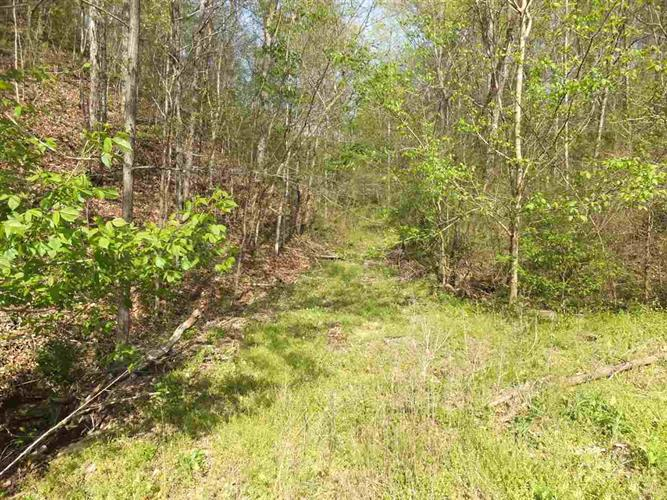 Huff Hollow Road, Newport, TN 37821 - Image 1