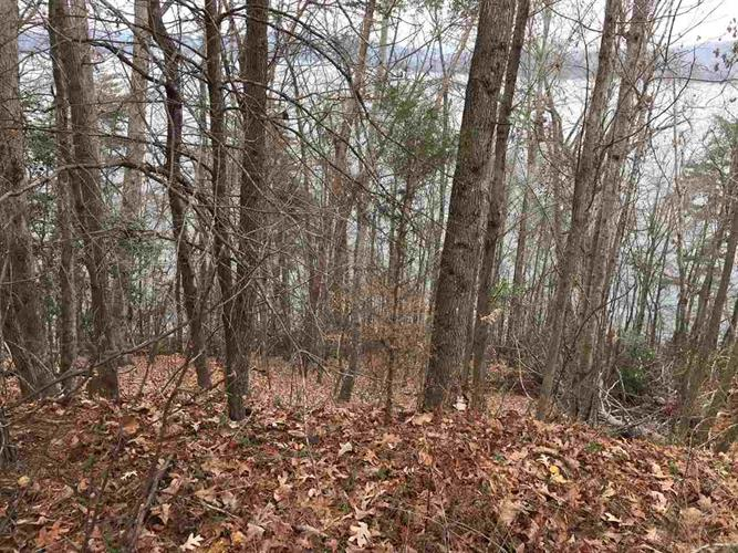 Lot 115 Thief Neck Drive, Rockwood, TN 37854