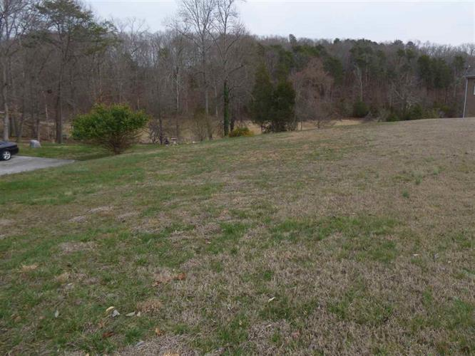 Lot 8 Back Nine Dr, Baneberry, TN 37890