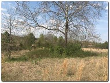 Lot 1 Old Newport Highway, Sevierville, TN 37876