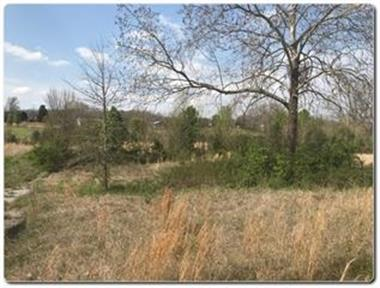 Lot 5 Old Newport Highway, Sevierville, TN 37876