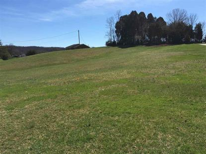 Lot 7 Easy St, Bulls Gap, TN