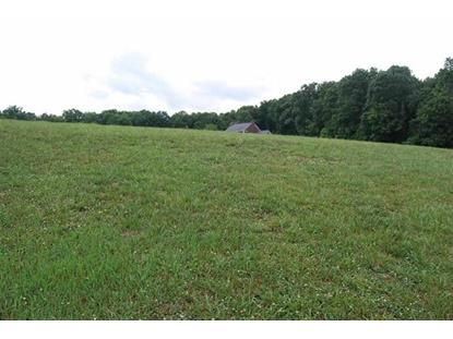 Lot 45 Blount Circle, Rutledge, TN