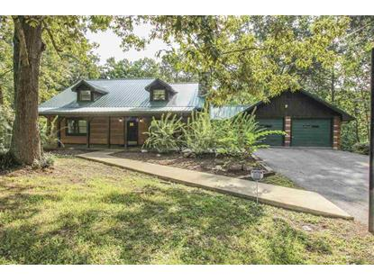 254 Wilmore Road, White Pine, TN