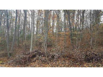 Lot 40 Grand Country Dr, Cosby, TN