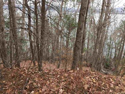 Lot 115 Thief Neck Drive, Rockwood, TN