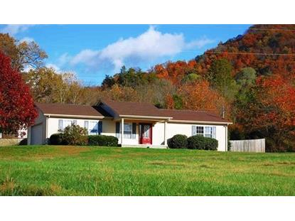 2516 County Line Rd, Mooresburg, TN