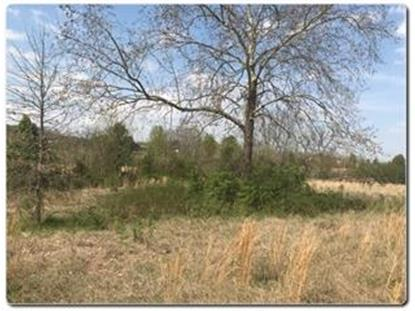 Lot 1 Old Newport Highway  Sevierville, TN MLS# 585112