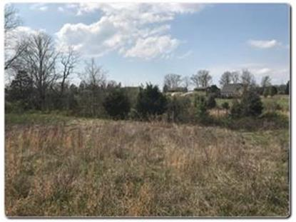 Lot 2 Old Newport Highway  Sevierville, TN MLS# 585113