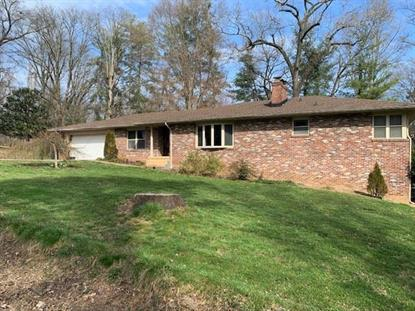 320 Grata RD  Knoxville, TN MLS# 589191