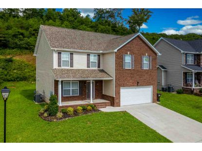 6131 Hollow View Lane  Knoxville, TN MLS# 590360